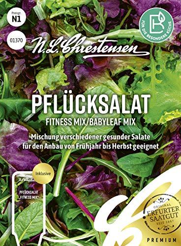 Pflücksalat Fitness Mix/Babyleaf Mix, Mischung verschiedener gesunder Salate, Samen, apog-01370