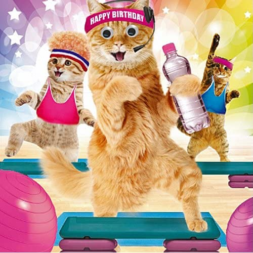 Birthday Card Happy Funny Animals Gym Cats