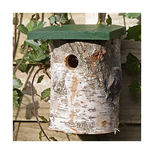 Birch Log Nest Box for Birds 32mm Hole Size *FSC