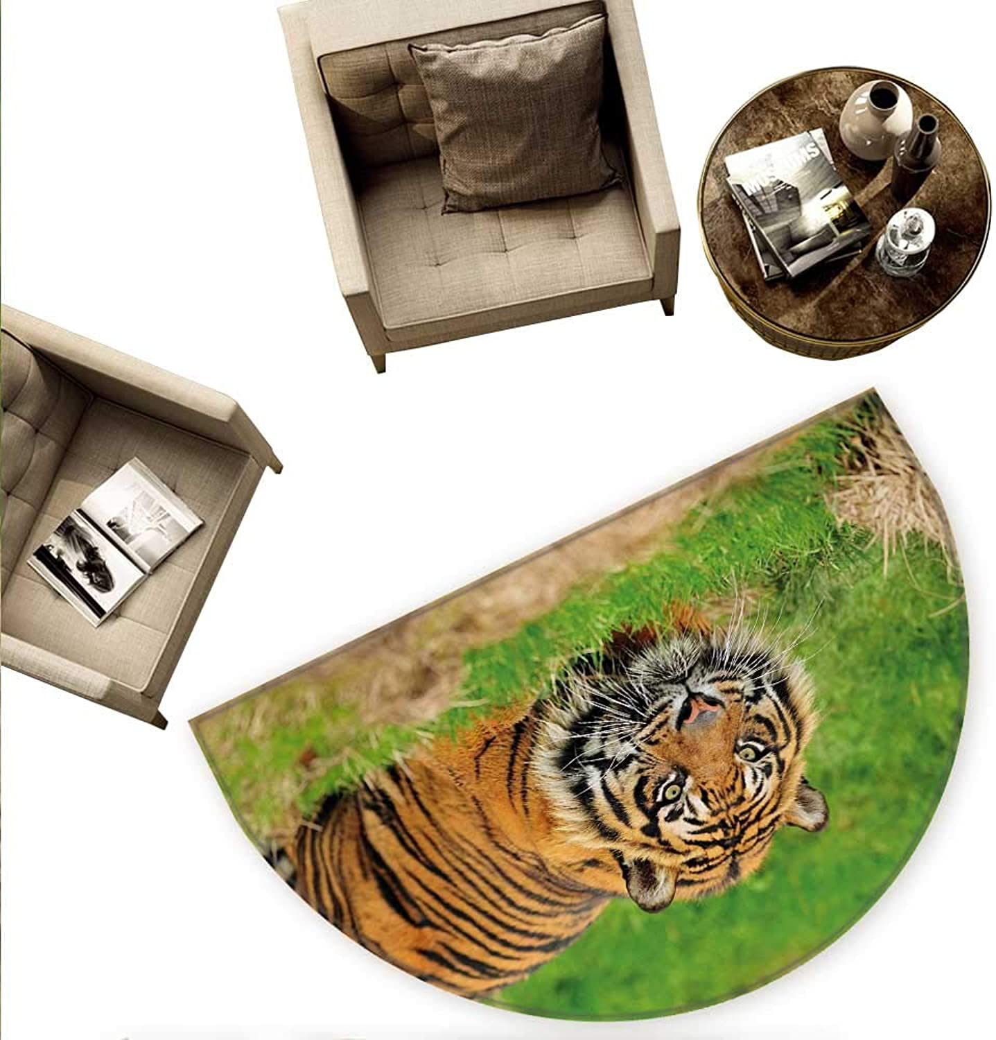 Tiger Semicircular Cushion Sumatran Feline Hiding in Ambush While Stalking Its Prey Moments Before Attack Entry Door Mat H 63  xD 94.5  Green orange