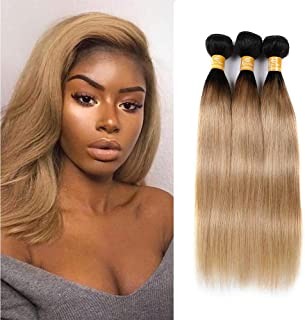 Ombre 1b/27 Straight Hair Bundles With Lace Closure 9A Malaysian Virgin Human Hair Free Part Closure With 3 Bundles Remy Hair Weft Unprocessed Two Tone Hair Extensions (18 20 22+16, Ombre Color 1B/27)
