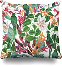 Ahawoso Throw Pillow Cover Art Blossom Watercolor Painting Tropical Flowers Spring Birds Abstract Green Costa Rica Exotic Design Home Decor Pillowcase Square Size 18