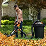 Best Leaf Mulchers - Worx Trivac Blower & Mulcher with Leaf Pro Review
