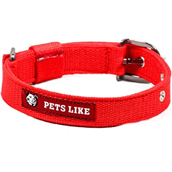 Pets Like Poly Collar, Red (25mm)