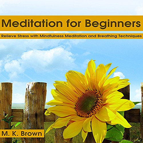 guided meditation for beginners audio