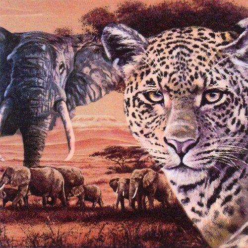 20 Servietten Afrikas wilde Tiere/Elefant/Leopard/Afrika 33x33cm (Badartikel)