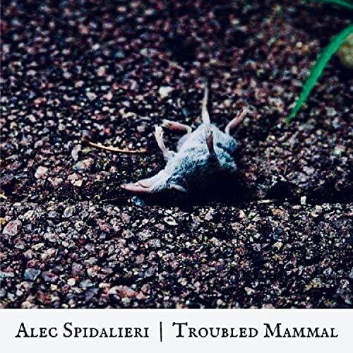 Alec Spidalieri