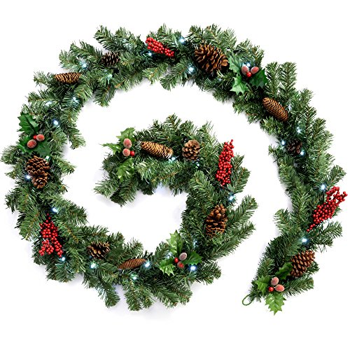 WeRChristmas Pre-Lit Natural Pine Cone and Berry Decorated Garland with 40 Cool White LED Lights, Red, 9 feet