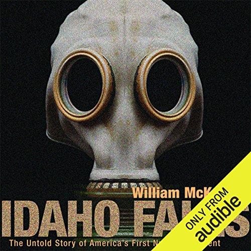 Idaho Falls audiobook cover art