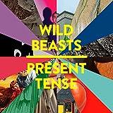 Songtexte von Wild Beasts - Present Tense