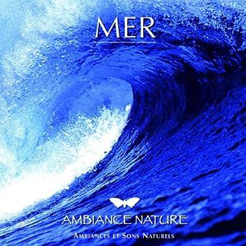 Ambiance Nature  Mer