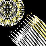 18 Pezzi Penne di Inchiostro Gel Bianco Oro Argento Evidenziare Arte Design Forniture da 0,5 mm Penne per Carta Nera Disegno Schizzo Illustrazione Diario Nozze Inviti e Libro da Colorare per Adulti