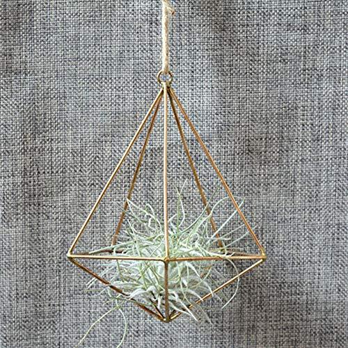 ZYZED bloempot Metalen pot houder bloempot terrarium doos decoratie vintage vrijstaande opknoping geometrische rush orchidee bloem Goud