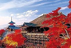 1000ピース ジグソーパズル めざせ! パズルの達人 秋深まる清水寺―京都(50x75cm)