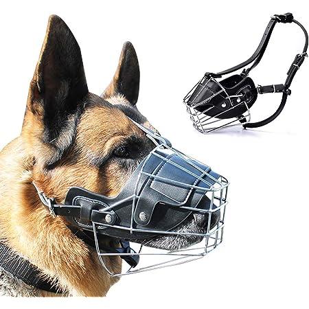 846 Deutscher Hund Typ Rottweiler ABC Sport Klin Maulkorb Metall//Leder verst/ärkt f/ür Hunde