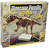Dig Out Dinosaur Skeleton Fossil Paleontology Archaeology Excavation Kit For Kids ~ T Rex by Carousel