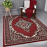 VIMODA - Alfombra clásica oriental densamente tejida para...