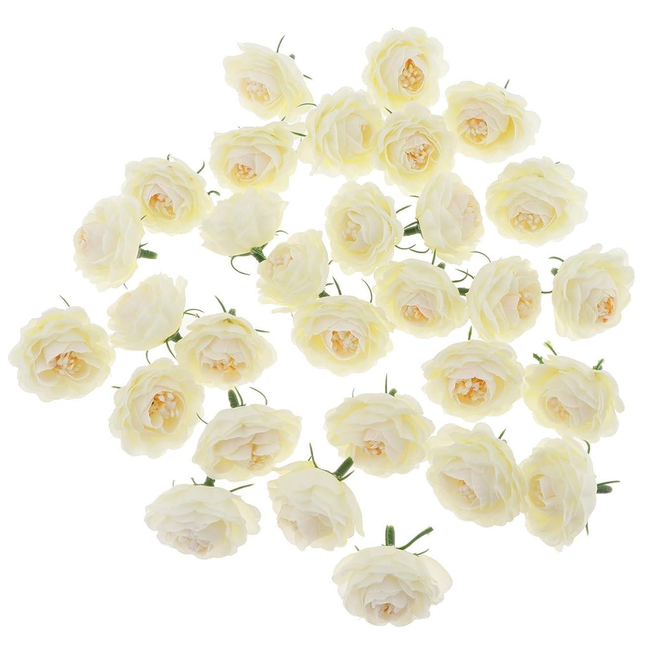 鏡欠かせないメナジェリー美しい 人工椿花の頭 DIY 工芸品 装飾 30個 多目的 装飾花 多色選べる - クリーム