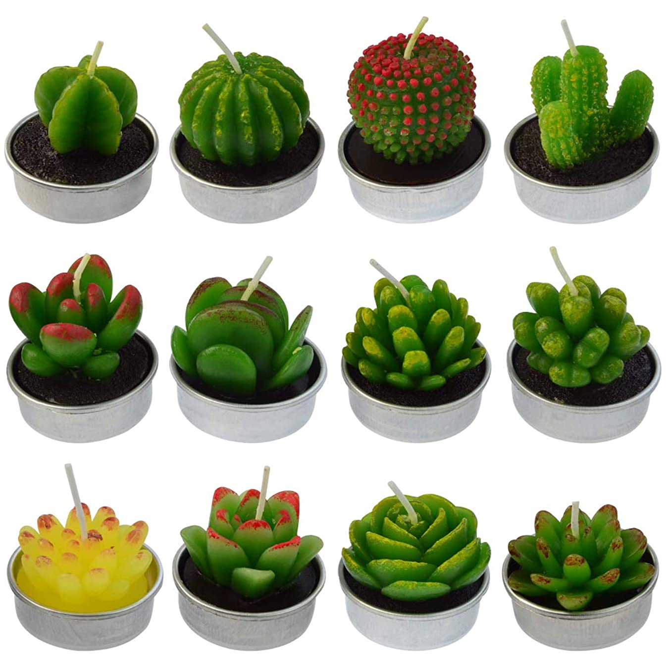 mifengda 12 PCS Cute Succulent Cactus Candles Smokeless Cactus Tealight Candles Delicate Decorative Candles Valentine's Day Birthday House-Warming Party Wedding Spa Home Decoration Gifts