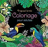 Coloriage pour adultes Tropical birds
