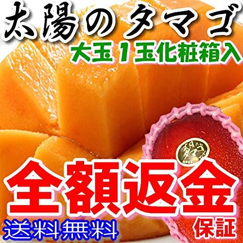 tt-1 宮崎 太陽のタマゴ 秀品 2L 1玉約350g化粧箱入 マンゴー