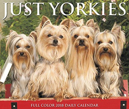 Just Yorkies 2018 Calendar