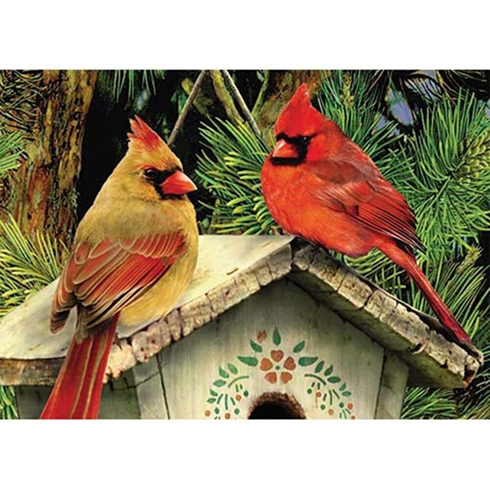 Paint by Numbers Kits Linnet Redbird DIY Oil Painting by Numbers Northern Cardinal DIY Canvas Painting by Numbers Acrylic Painting Kits Bird for Adults Arts Craft for Home Wall Decoration Cardinals