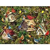 CBA BING Adulto Rompecabezas 1000 Pieza del Rompecabezas de Madera, Temas de Puzzle Juegos de la Familia, Knight y Chicas, Chalet y Bluebird,B