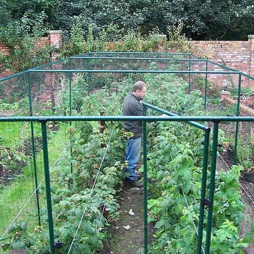 Two Wests Deluxe 6' High Fruit Cage