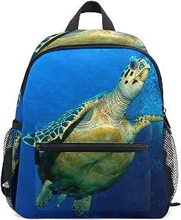 Hawksbill Turtle School Backpack for Boys Kids Preschool School Bag Toddler Bookbag