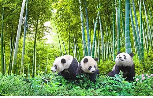 ZAMLE Personnalisé 3D Photo Papier Peint Panda Forêt De Bambou TV Arrière-Plan Mur Papier Peint Salon Salon Paysage Peinture Papiers Peints Moderne, 200x140 cm (78.7 by 55.1 in)