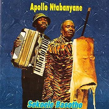 Sekoele Basotho