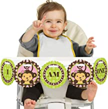 Big Dot of Happiness Pink Monkey Girl 1rst Birthday Highchair Decor - I Am One - First Birthday High Chair Banner