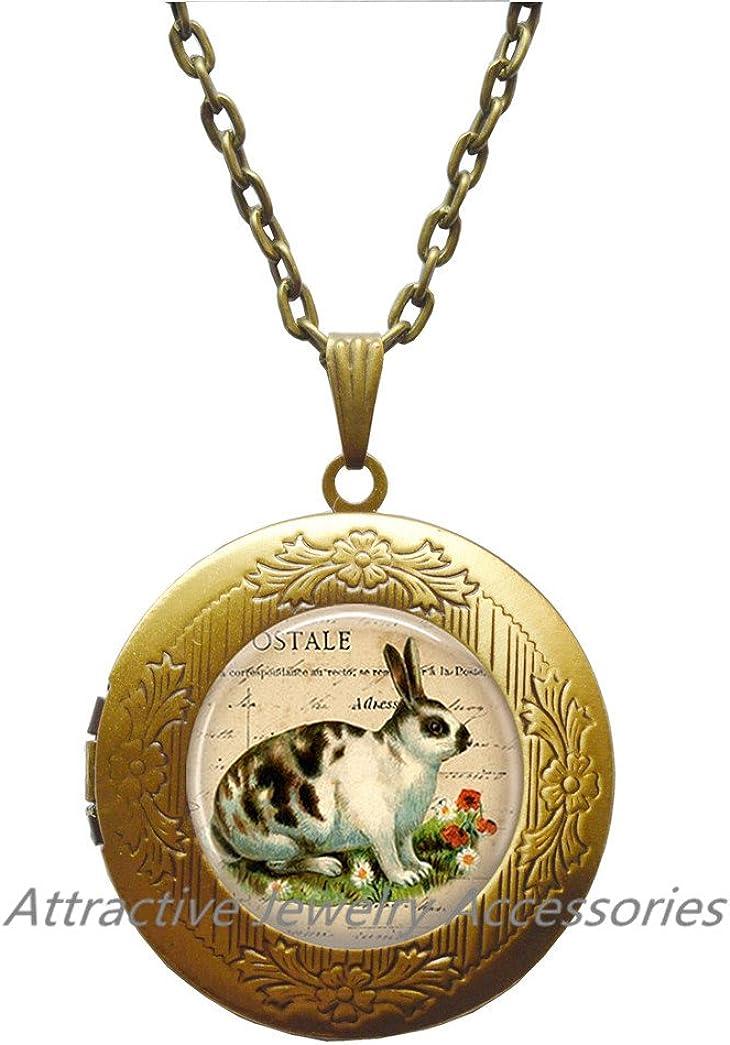 Wklo0avmg Rabbit Locket Necklace Locket Pendant Wearable Art Rabbit Jewelry children's animal jewellery children's jewellery children's gift,QK017