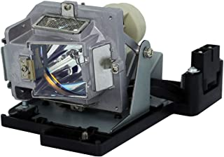 STAR-LAMP BL-FP180D Replacement Projector Lamp Bulb with Housing for OPTOMA DS219 DS317 DX617 ES522 ES526B ES531 EX532 TX532