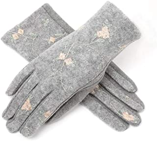 CHENGYUXINTAI Winter Gloves Women's Autumn and Winter Velvet Sexy Elegant Touch Screen Gloves (Color : Gray, Size : One Size)