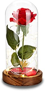 Beauty and The Beast Red Enchanted Rose Kit Red Rose Flower LED Light in Glass Cover Dome on Wooden Base, Romantic Gift for Valentine's Day Anniversary Birthday Wedding