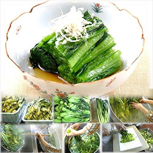 小松菜のおひたし 1食 惣菜 お惣菜 おかず 惣菜セット 詰め合わせ お弁当 無添加 京都 手つくり