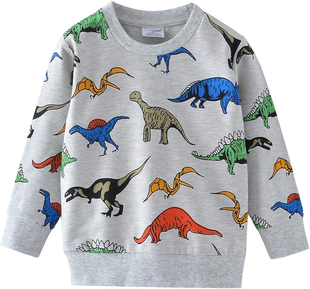 BTGIXSF Little Boys Dinosaur Sweatshirt Cotton Crewneck Long Sleeve Pullover Tops Toddler Kids 1-7T