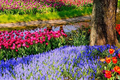 Adultos Puzzle 1000 Piezas De Madera Niño Rompecabezas Tulipanes En Las Flores Juego Casual De Arte Diy Juguetes Regalo Interesantes Amigo Familiar Adecuado
