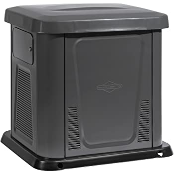 Briggs & Stratton 40325 10,000 Watt Natural Gas/Liquid Propane Powered Air Cooled Home Standby Generator