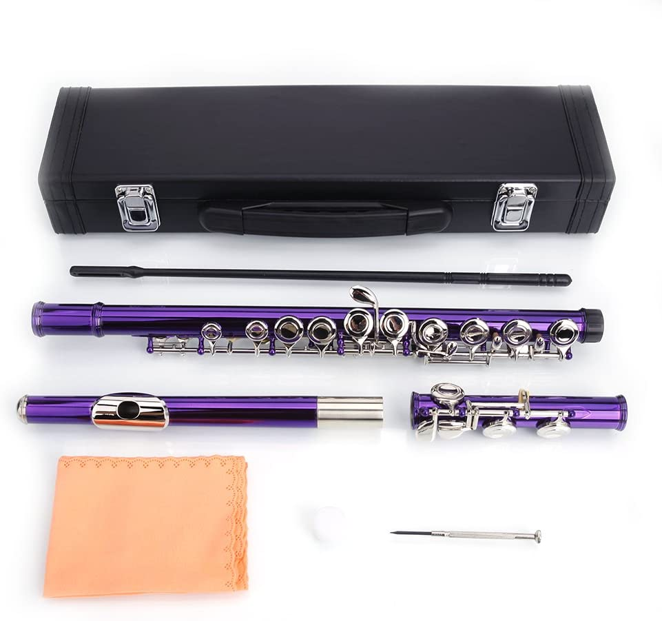 Closed Hole 5 ☆ very popular Flutes C 16 Key Cupr Kids OFFicial site Beginner kit Student for