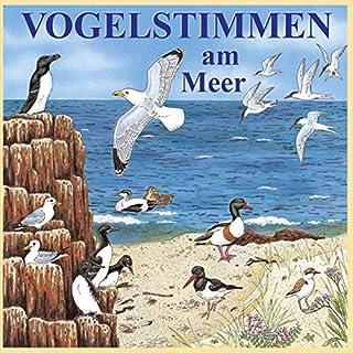 Vogelstimmen am Meer Titelbild