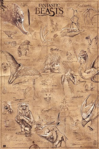 Close Up Fantastic Beasts Poster Tierwesen (61cm x 91,5cm)