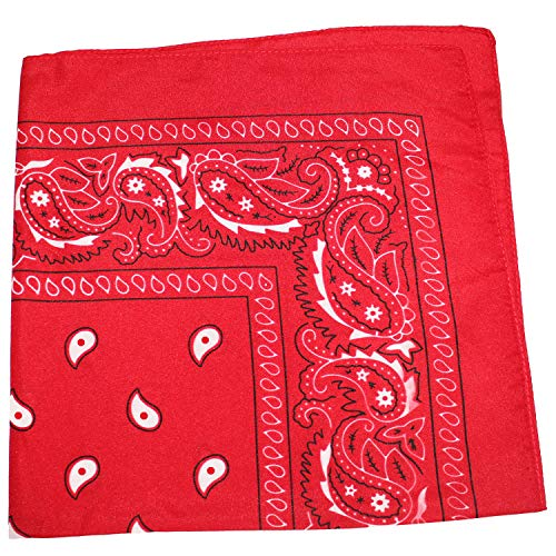 Mechaly Paisley 100% Polyester Unisex Bandanas - 8 Pack (Red)
