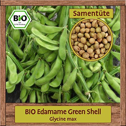 Samenliebe BIO Gemüse Samen Bohnen Green Shell (Glycine max) | BIO Bohnensamen Gemüsesamen | BIO Saatgut für 15 Pflanzen
