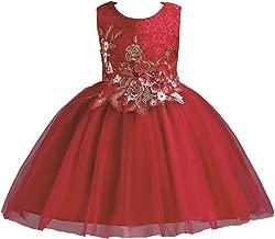 Puseky Baby Girl Kids Princesa Vestido de Novia Bordado Floral Tutu Costume Party Vestido Formal