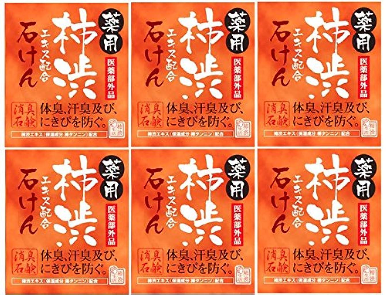 ルネッサンス暴露まばたきマックス薬用柿渋石けん100g箱×6箱セット