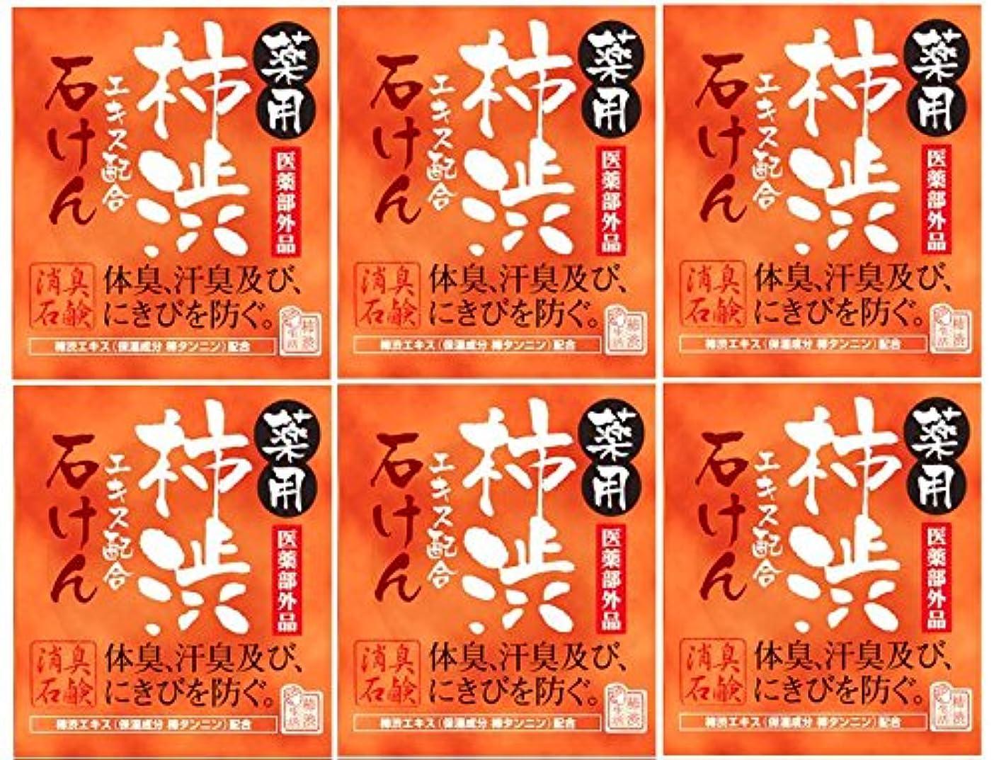 まで展示会ベットマックス薬用柿渋石けん100g箱×6箱セット