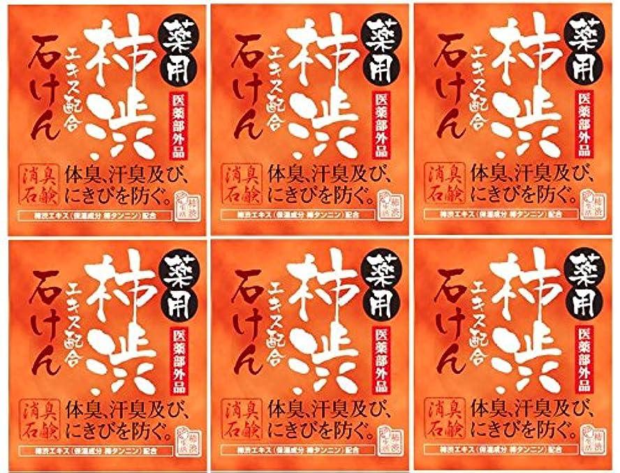 感覚スーダン脅威マックス薬用柿渋石けん100g箱×6箱セット